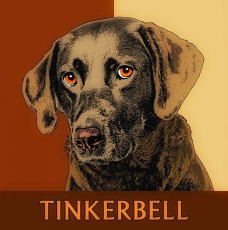 Labrador Pop Art Portrait Geschenkidde Hundebesitzer braun schwarz