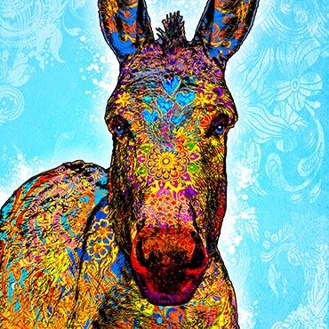 Esel-pop-art-bild-bunt-auf-leinwand-ralph-hatzold01