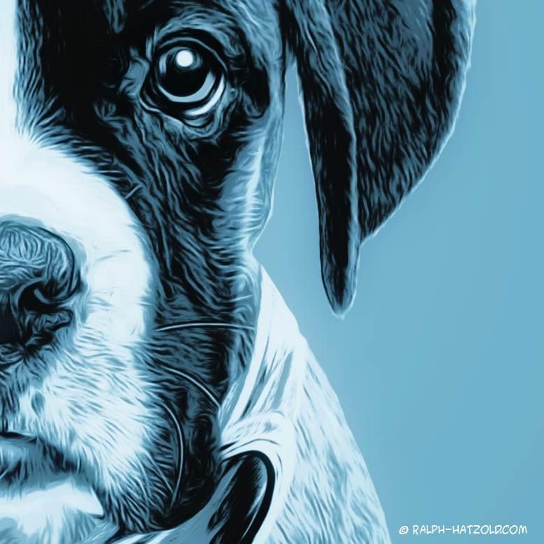 Pop Art von Deinem Haustier, Foto Pop Art