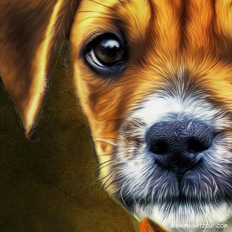 Hund im Anzug, Hund in Kleidung, Bild Barockrahmen, Gemälde Stil, Barock Bild Hund