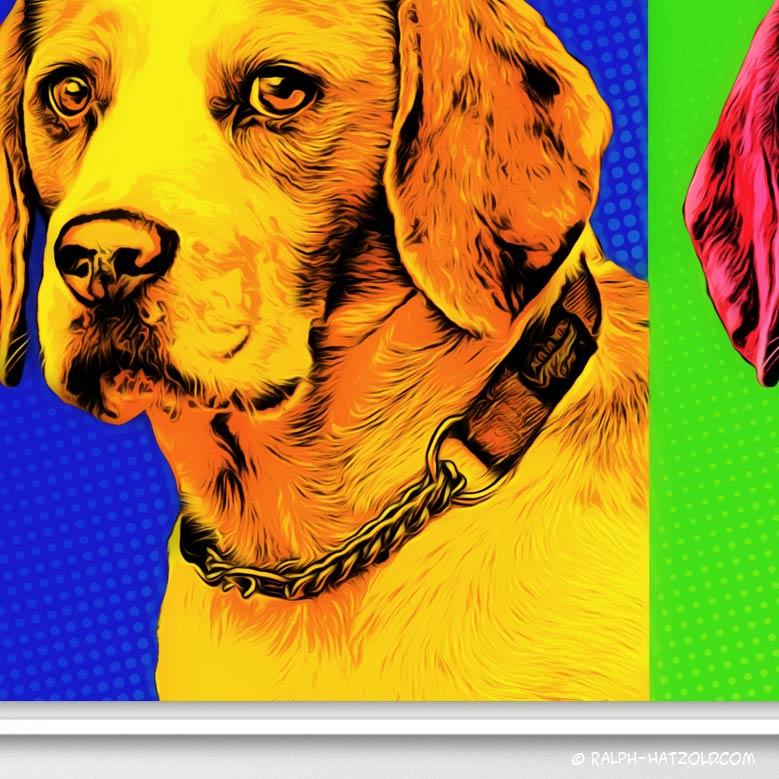 Beagle Hundeportrait Pop Art, Geschenkidee Leinwand