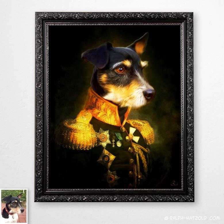 Terrier in Uniform, Hund in uniform, dog in uniform