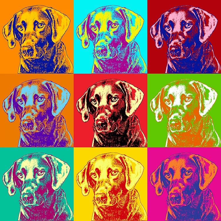 pop-art-andy-warhol-hund-style-ralph-hatzold-009