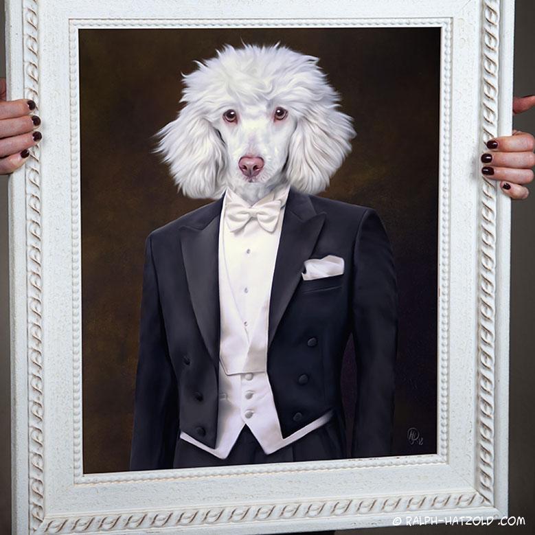 Hundeportrait Pudel in Kleidung, Hundekleidung, Hundebekleidung
