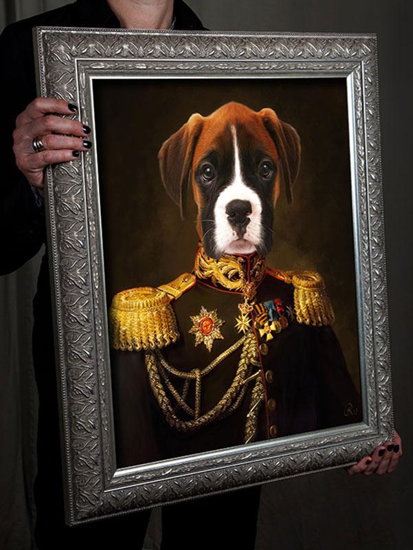 Boxer in Uniform, Hund in Kleidung, Bild Boxer, Hundebilder in Kleidung