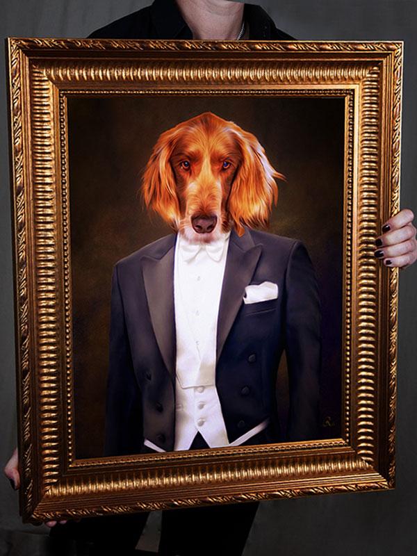 Irish Setter im Anzug, Hund in Kleidung, Bild kaufen Hund in Hundekleidung