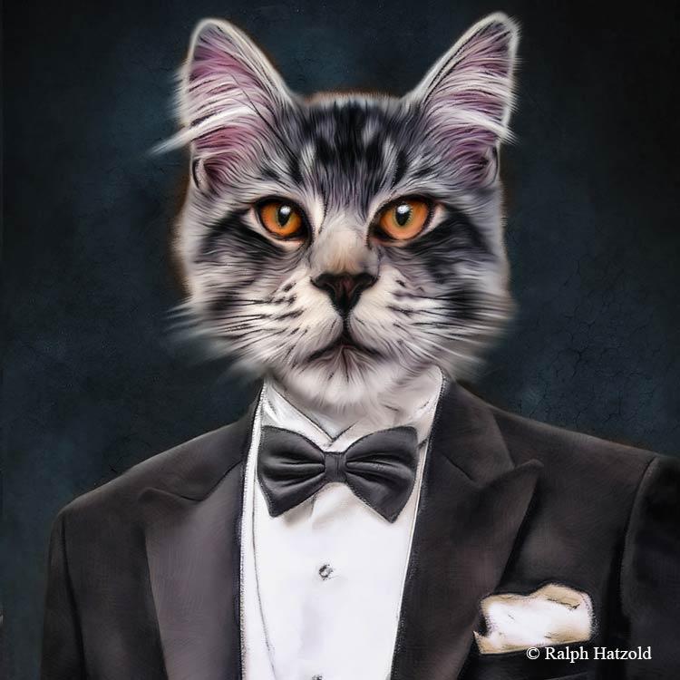 Katzenportrait, Katze in Uniform, Katzen in Kleidung, Barockrahmen, Geschenk für Katzenfreunde, Katze Gemälde Stil