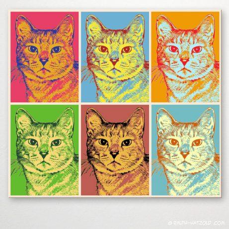 Pop Art Katze Leo, Pop Art Geschenk Katze, Einrichtungsbeispiel, Pop Art auf Leinwand