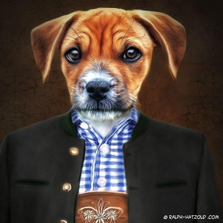 Hund in Lederhose, Hundeportrait in Kleidung