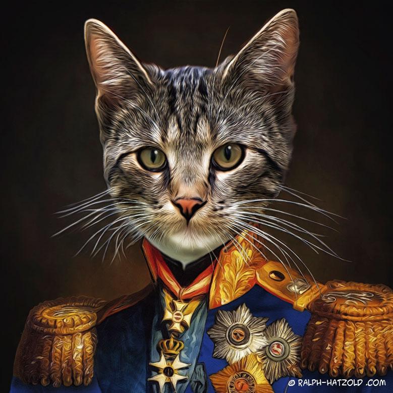 Katzenportrait, Katze in blauer Uniform Gemälde