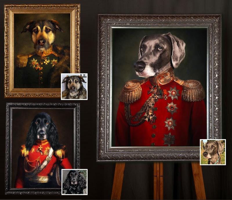 Hund in Uniform, Hund in Kleidung, Hundeportraits vom eigenen Hund