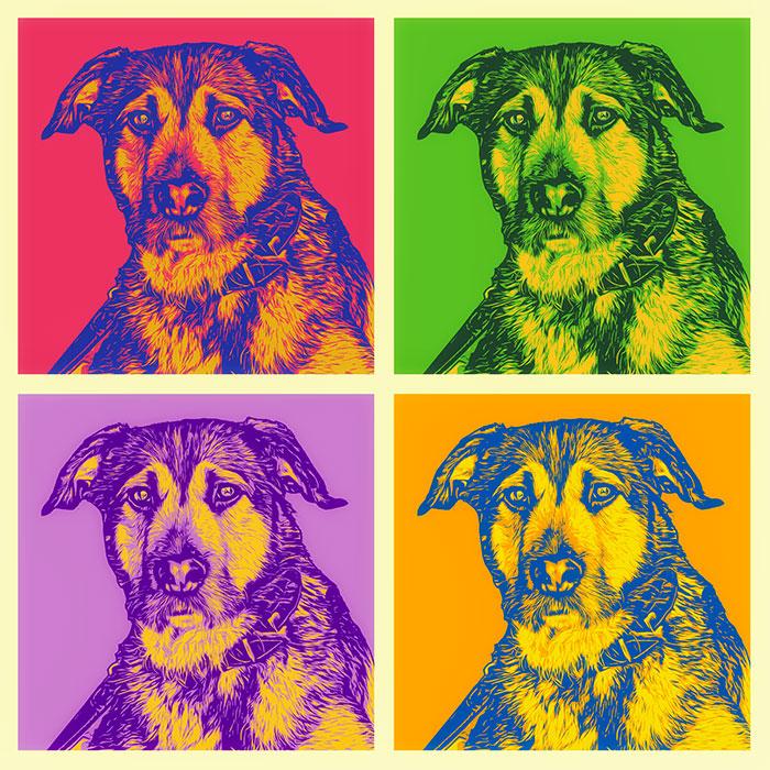 Hundeportrait bunt, Farbvarianten, Andy Warhol stil vom eigenen Foto