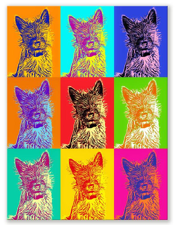 pop Art Andy warhol Style Hundeportrait bunt vom eigenen Hund