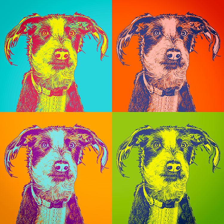 Elvis Andy Warhol Stil, Hundeportrait Elvis, Bilder für die Wand, Pop Art