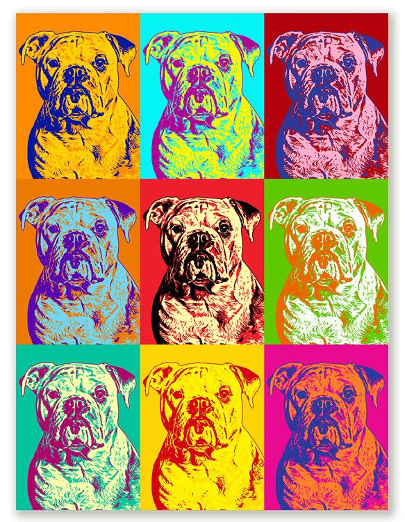 Pop Art Hundeportrait, Bild für die Wand, Pop Art vom eingen Foto