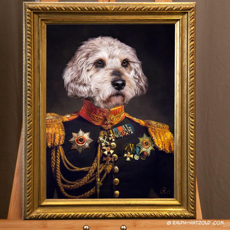 Hund in Uniform, Hundekleidung