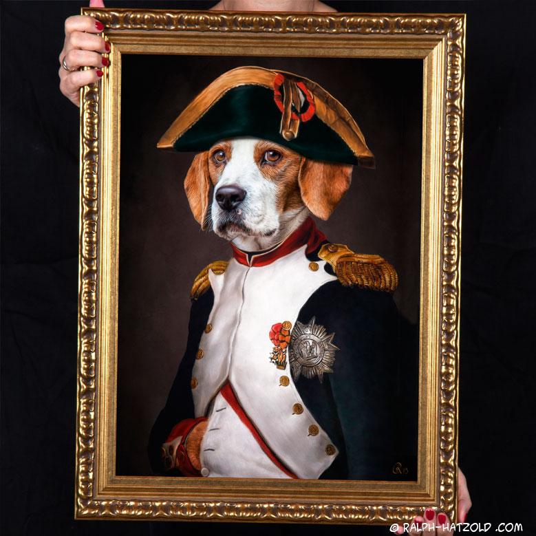 hundeportrait beagle als Napoleon Bonaparte, Beagle Gemälde Stil in Kleidung