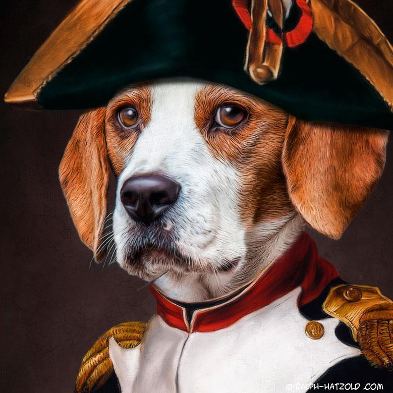 Napolion Bonaparte Hundeportrait