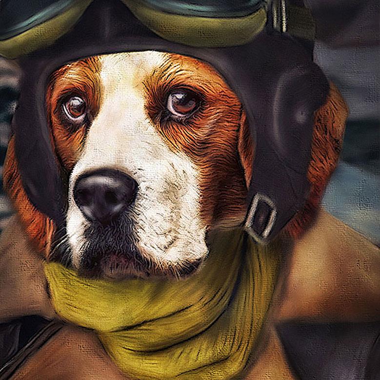 Beagle, Hund in Pilotenkeidung, Hund Pilot