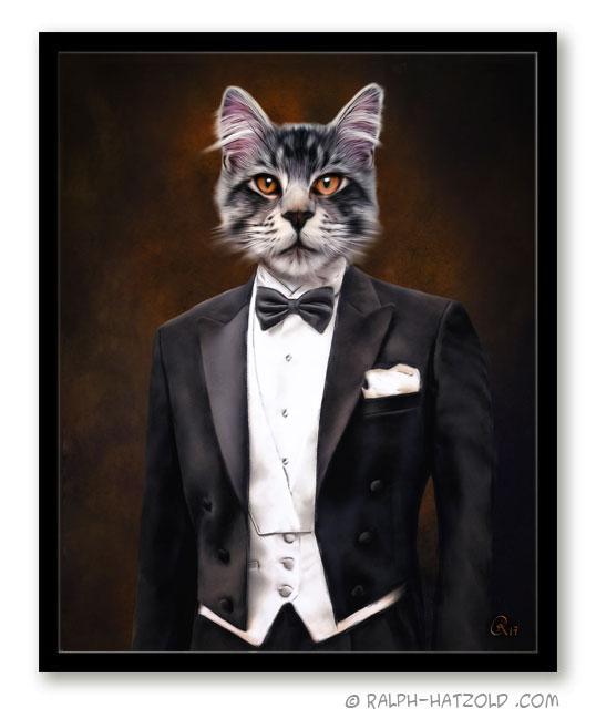 Katzen in Kleidung, Katzenportrait im Anzug