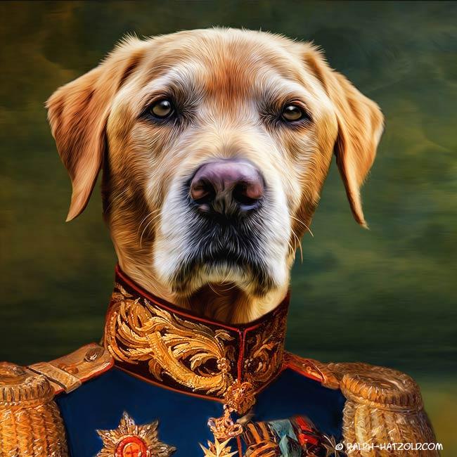 gelber Labrador in Uniform