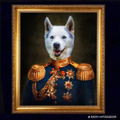 husky Hundeportrait in Uniform Geschenkidee für Hundebesitzrer