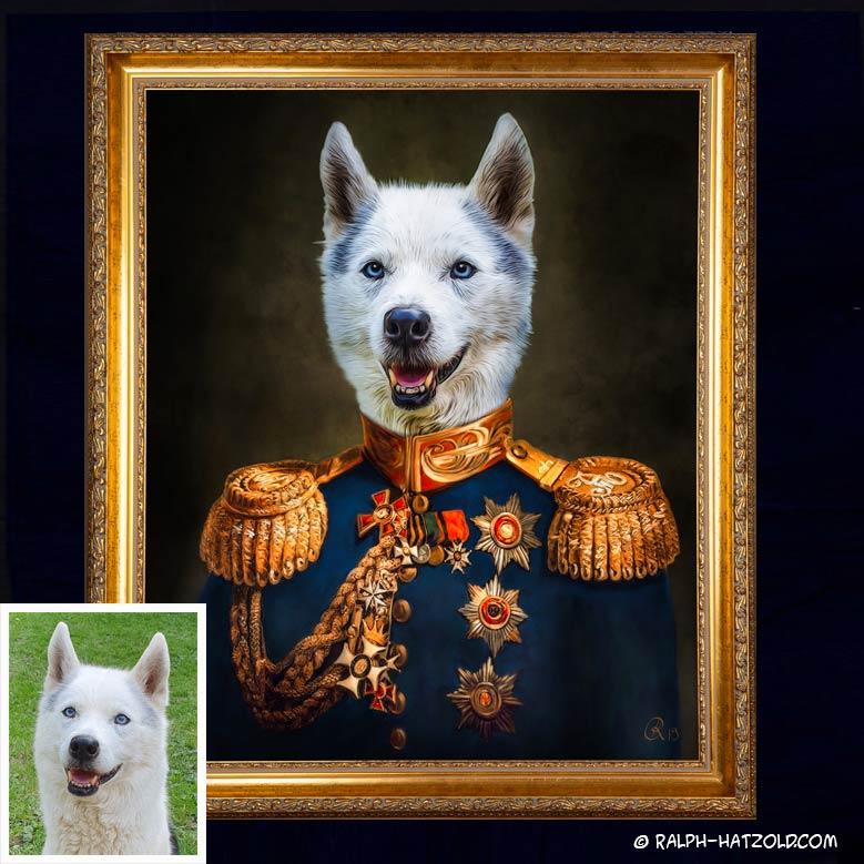 Husky Portrait in Uniform, Geschenkidee Husky Hunde In Kleidung