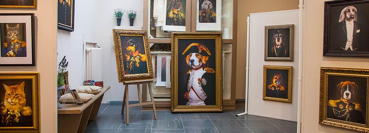 Galerie Hunde und Katzen in Kleidung