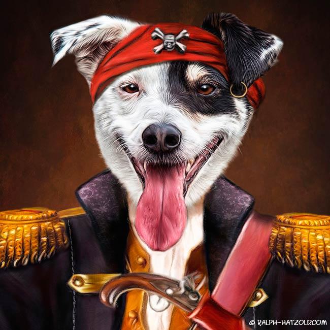 Igor Gewinner Sat1 NRW Hundepirat Hund in Piratenkleidung