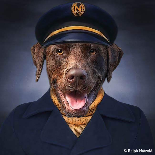 brauner Labrador in Kapitäns Kleidung Hund in Uniform