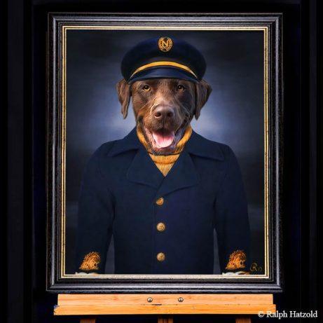 brauner Labrador in Kapitäns Kleidung Hund in Kleidung