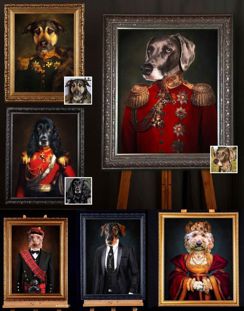 Hundeportraits in individueller Kleidung, Uniform, Kleid, Anzug, Schotte