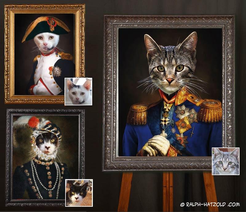 katzenportraits in Kleidung, Gemälde Katze in Uniform, Katze als Napoleon, Katze im Kleid