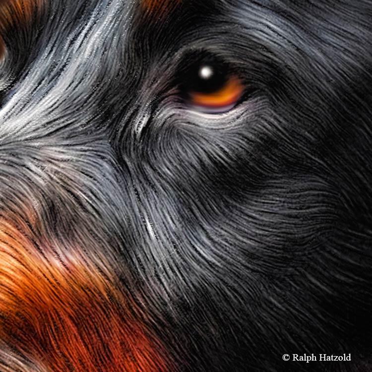 Individuelle Gemälde Gordon Setter in Kleidung, Gemälde vom eignen Hund, Geschenk Gordon Setter