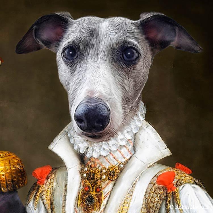 Whippet Gemälde Hundeportrait Geschenkidee Hunde und Hundebesitzer Whippets individuelles Portrait in Kleidnung