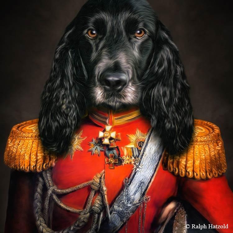 Schwarzer Cocker in roter Uniform Ivanhoe Gemälde vom eigenen Hund in Kleidung, Hunde in Kleidung