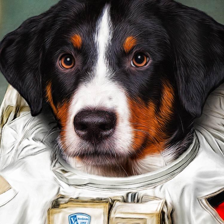 Hundeportrait Appenzeller Sennenhund hund in Kleidung Astronaut Raumanzug Geschenkidee Gemaelde
