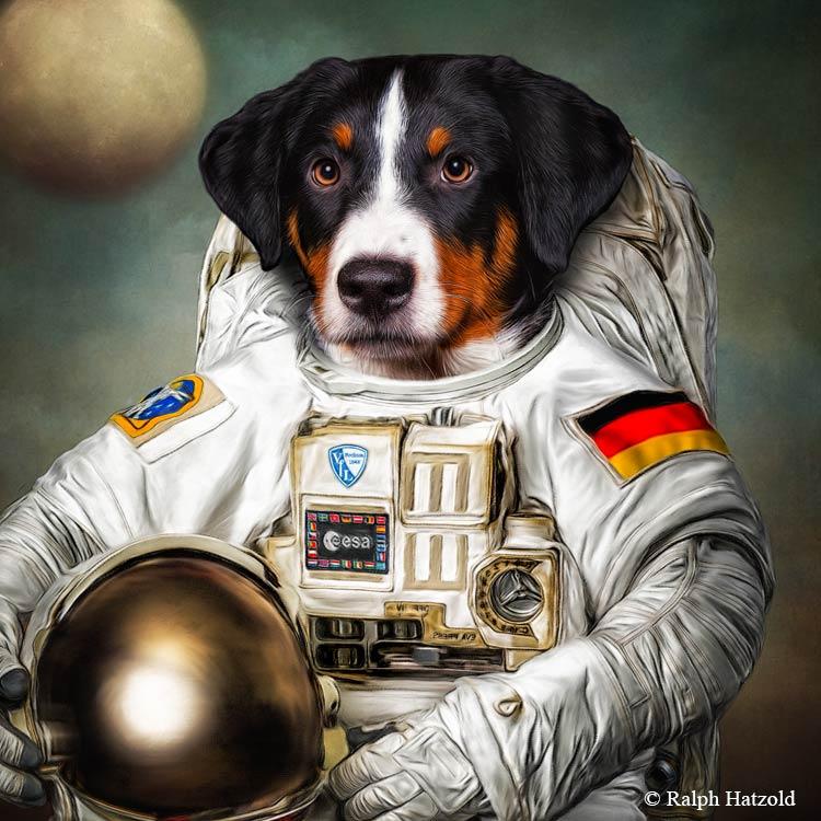 Appenzeller Sennenhund Gemälde Geschenkidee Haustier als Gemälde, in Kleidung Hund als Asronaut
