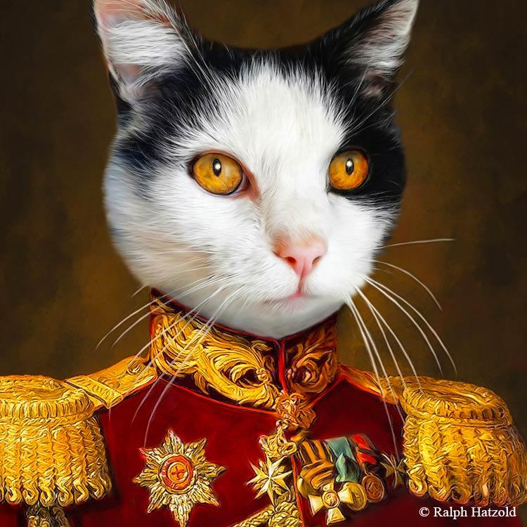 Katzenportrait Minki, Katze in roter Uniform, Katzen in Kleidung, Barockrahmen, Geschenk für Katzenfreunde, Katze Gemälde Stil
