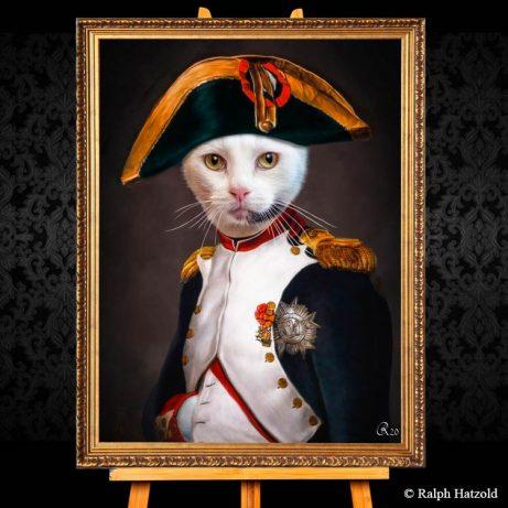 Katzenportrait Sylvester Napoleon Banaparte, Katze in Uniform, Katzen in Kleidung, Barockrahmen, Geschenk für Katzenfreunde, Katze Gemälde Stil