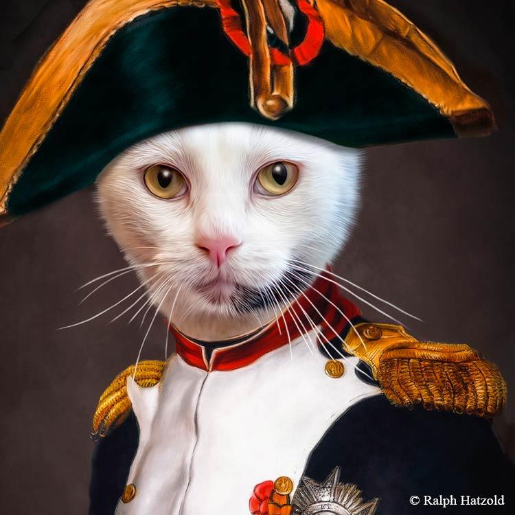 Napoleon Bonaparte, Katze Gemälde Stil in Uniform, gerahmt in Barockrahmen, Goldrahmen