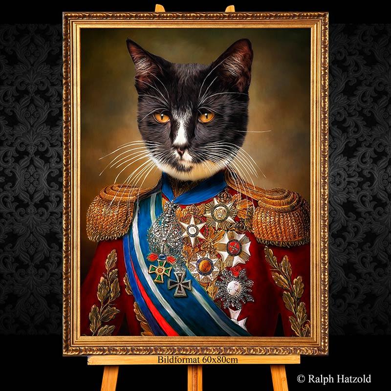 Kater Nero in Uniform, Bild kaufen, Katzenportrait in Uniform, gerahmt