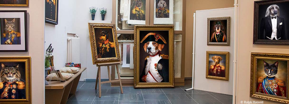 Galerieansicht Gemälde  Hundportraits und Katzenportraits in Kleidung, Barockrahmen, Hunde und Katzen in Uniform, Jagdkleidung, Anzug