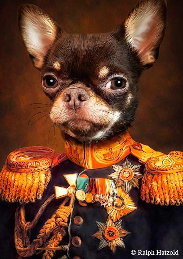 Ralph Hatzold Hundeportrait Chihuahua in Uniform Gemälde in Kleidung Weihnachtsgeschenk Hunde individuelle Geschenke